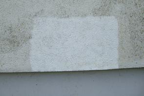 Algenbewuchs entfernen Hauswand